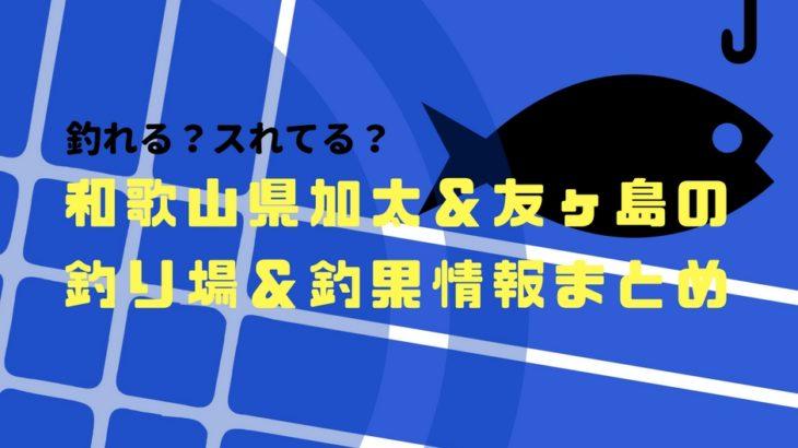 スれてる?釣れる?和歌山県加太&友ヶ島の釣果情報と釣り場まとめ