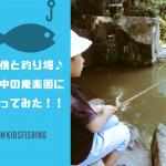 【子供とお出かけ】豊中市の釣り堀 衆楽園で爆釣!吹田から車10分